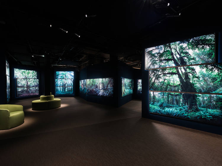 'Tranquility' and 'Joy' at the Wellcome Collection review