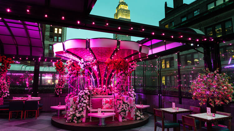 Magic Hour Pink Rose Garden