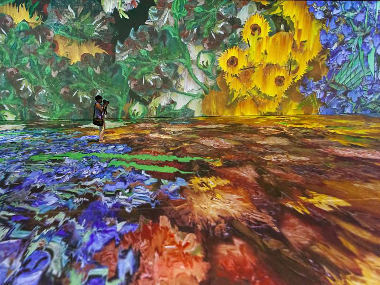 """Beyond Van Gogh"" brings SoCal's first immersive Van Gogh show to Anaheim"