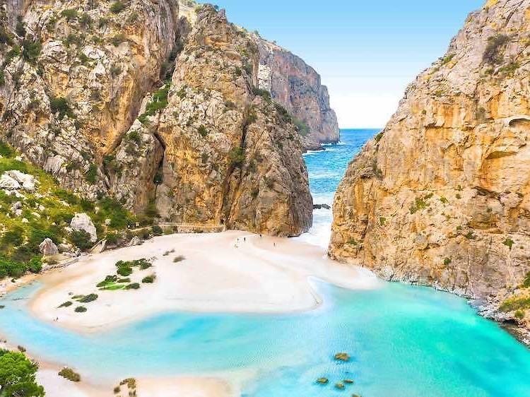 5 coses imprescindibles si visiteu Mallorca