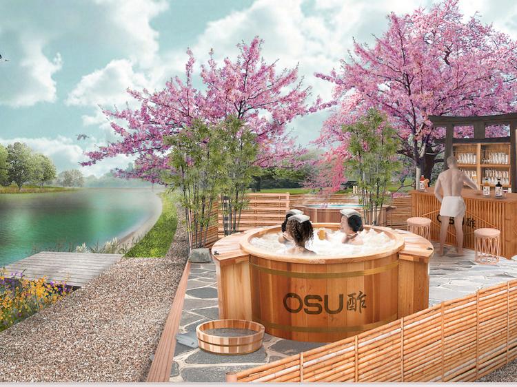 Drink apple cider vinegar naked in a Japanese-style hot tub in Beckenham