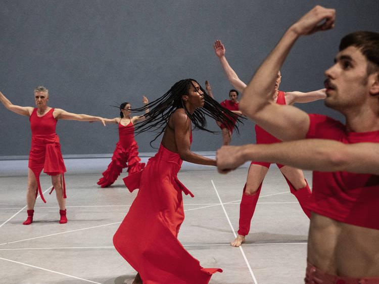 Teatro Municipal do Porto revela programação para a nova temporada