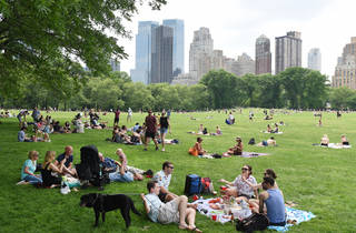 Picnic in NYC park