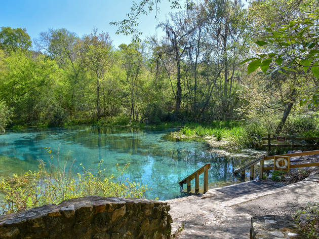 The best natural springs near Miami for a refreshing swim