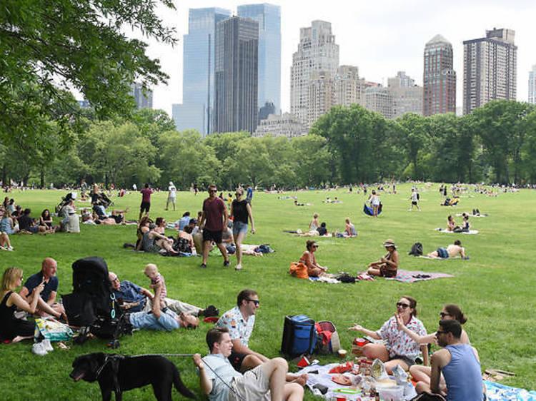 ニューヨーク市ナイトライフ諮問委員会が公園での飲酒合法化を提言