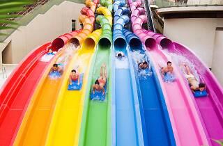Ocean Park Rainbow Rush