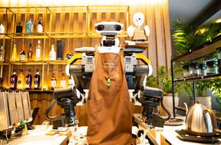 Dawn Avatar Robot Cafe