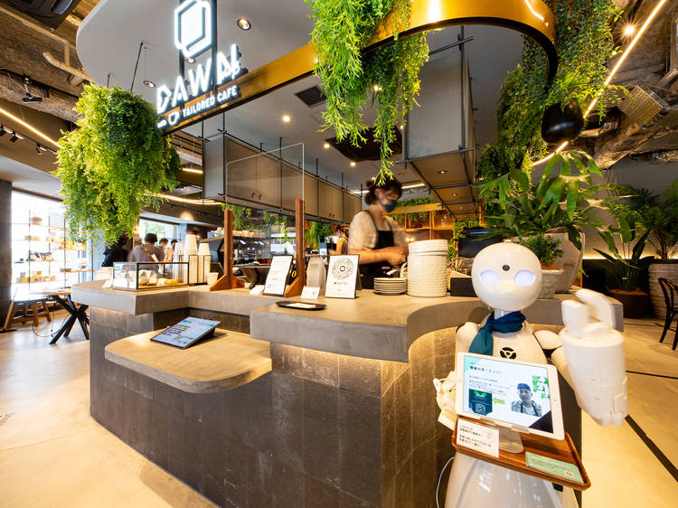 DAWN Avatar Robot Café