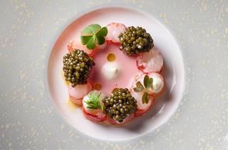 Gambero Rosso in Champagne tomato sauce with Oscietra caviar