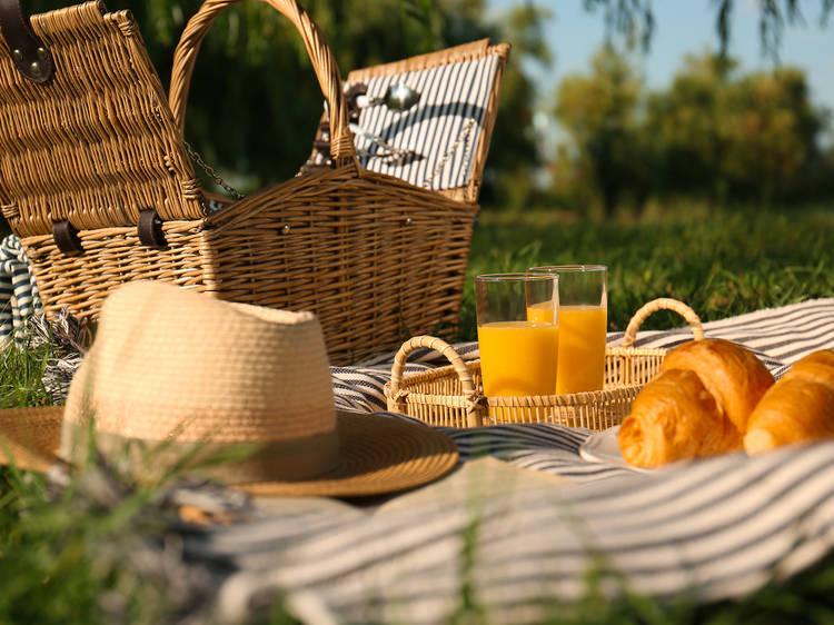 Ir de picnic