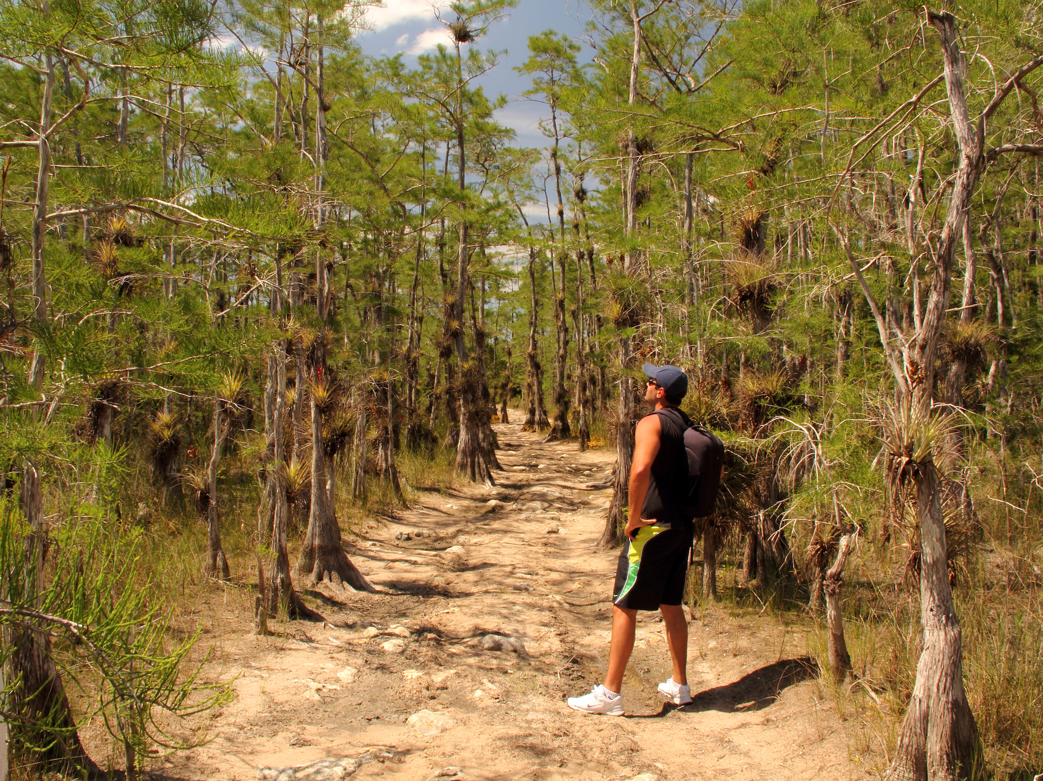 The best state and national parks near Miami