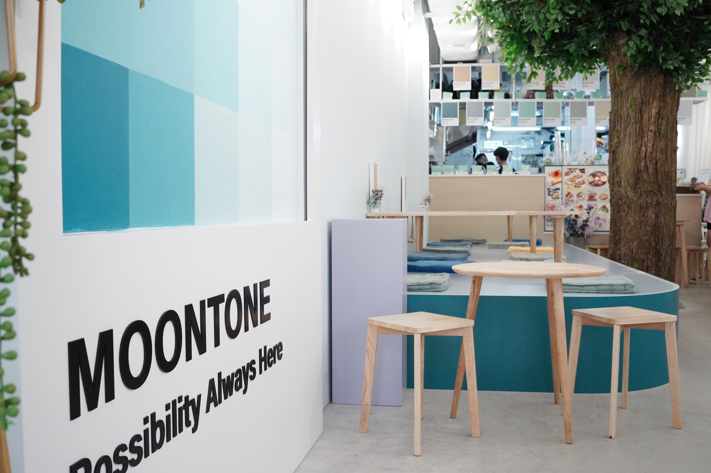 Moontone is Prince Edward's newest pet-friendly and Pantone-styled cafe