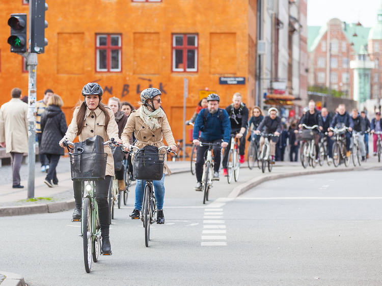 Take walks and cycle on local trips