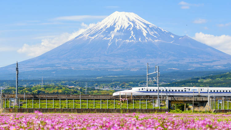 7 things you didn't know about the shinkansen, the world-famous Japanese bullet trains