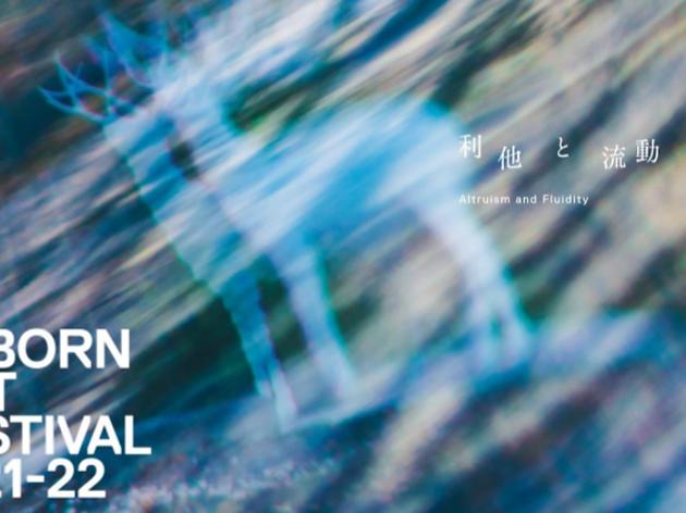 REBORN ART FESTIVAL 2021-22