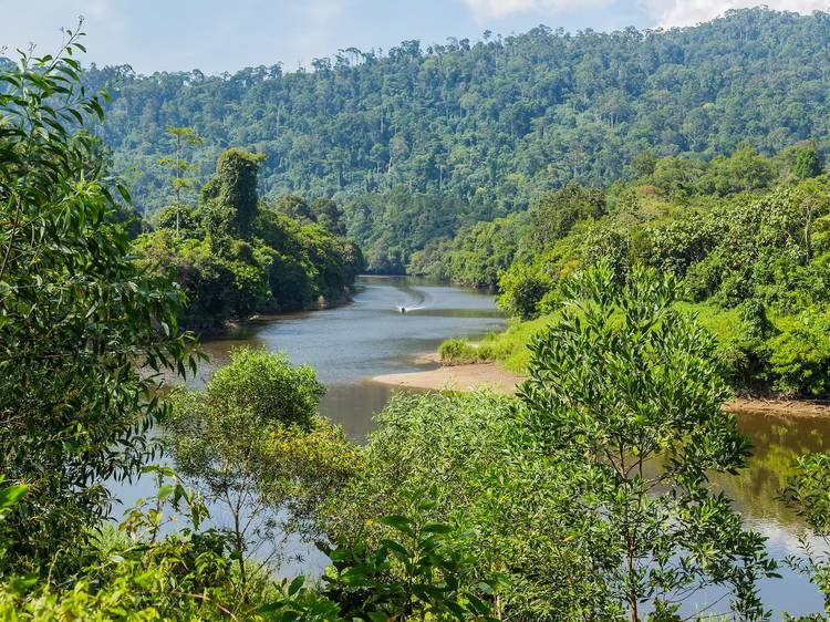 The best diving and hiking spots in Brunei