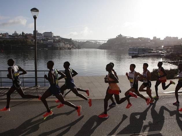 Novembro é o mês do regresso da Maratona do Porto