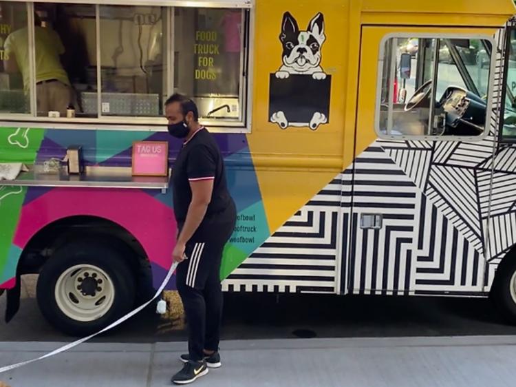ニューヨークで犬のためのフードトラックが人気