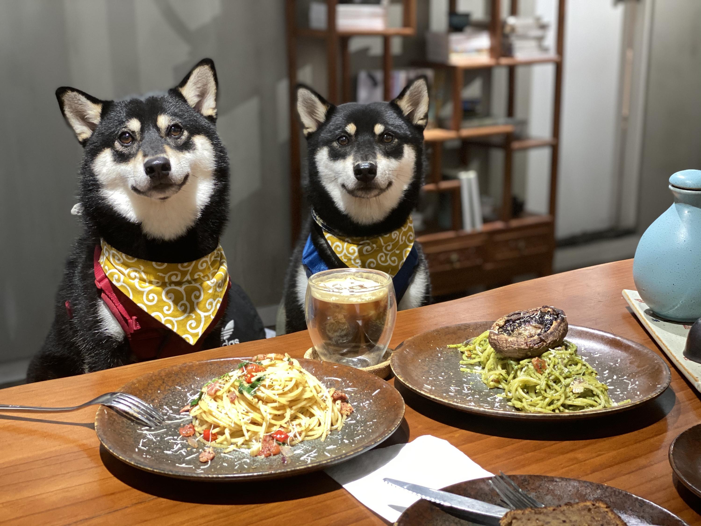 狗狗好去處!港島六間寵物友善餐廳