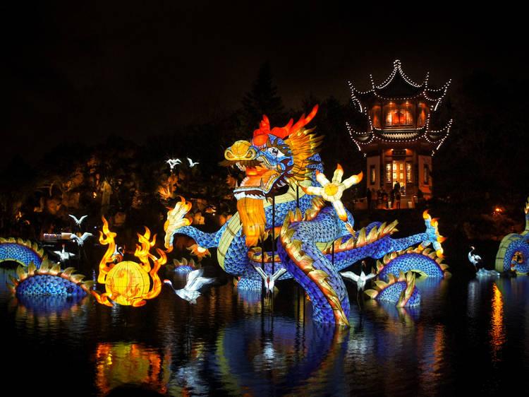 Chinese lanterns are lighting up the Botanical Garden