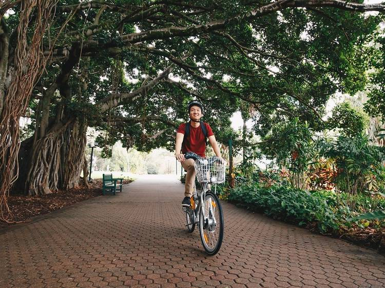 Explore South Bank to Kangaroo Point on two wheels
