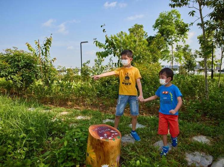 The best kid-friendly hiking trails in Singapore for the family