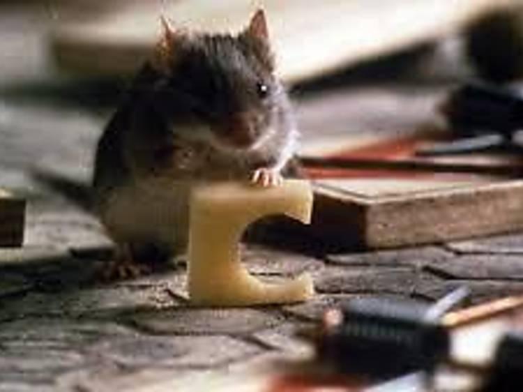 Mouse Hunt (1997)