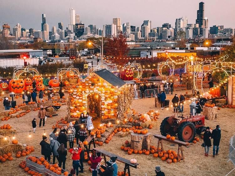 Enter a fall-themed wonderland at Jack's Pumpkin Pop-up