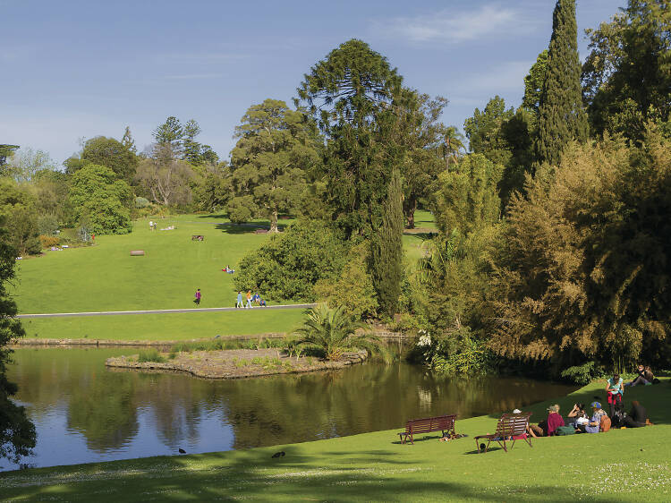 Visit the best picnic spots in Melbourne