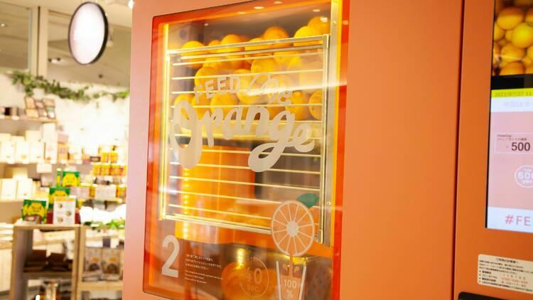 『Feed Me Orange』