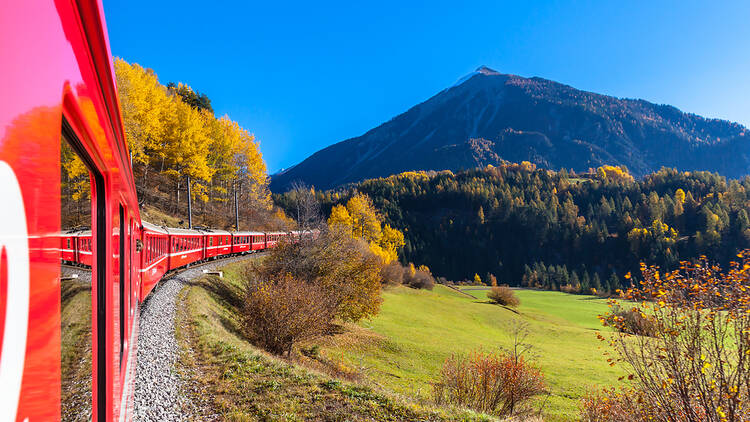 A train in the countryside
