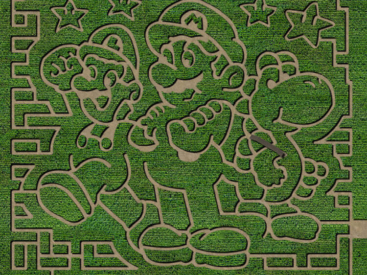 A giant Super Mario corn maze is now open in New Jersey