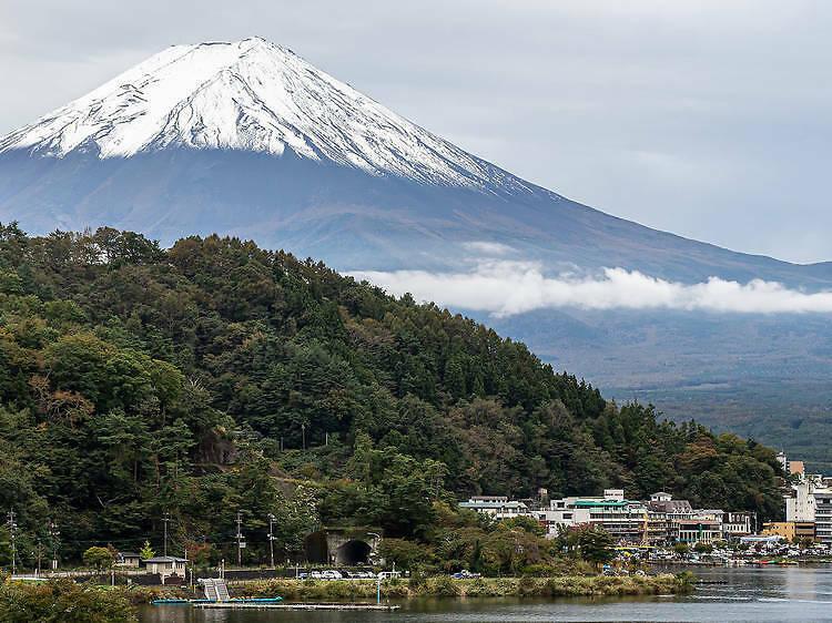 JR Tokyo Wide Pass
