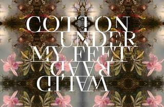 Cotton Under My Feet. Walid Raad (Thyssen)