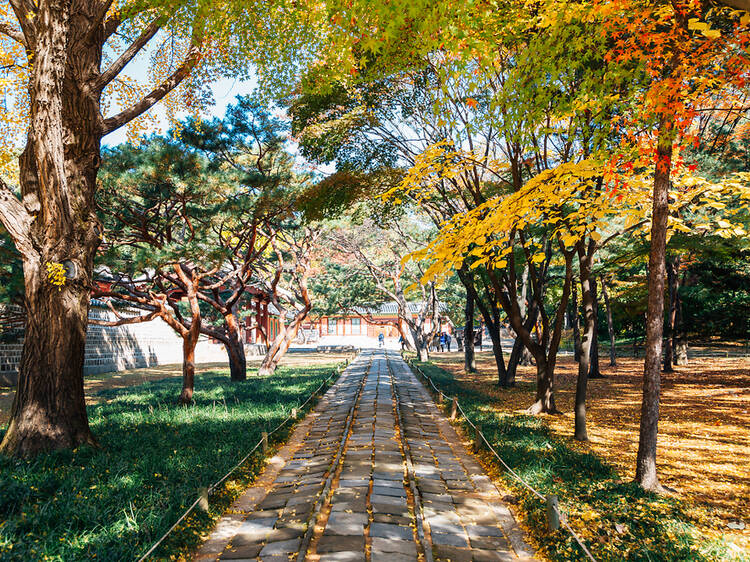 Jongno 3-ga, Seoul