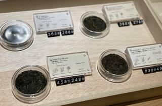 Green Ginkgo Tea