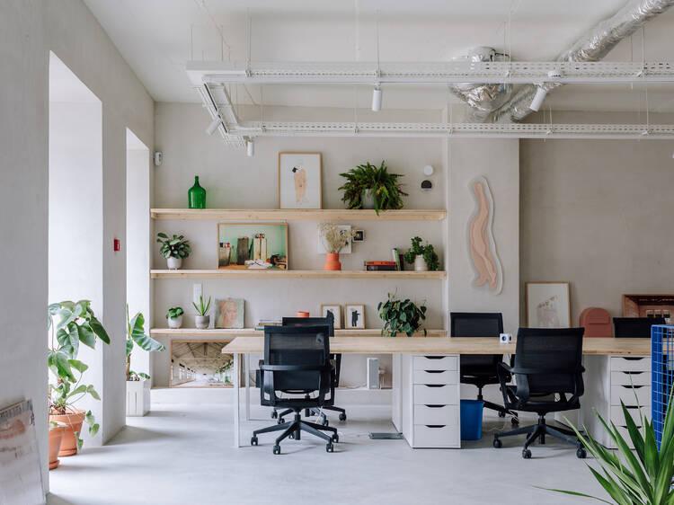 Jibóia Studio