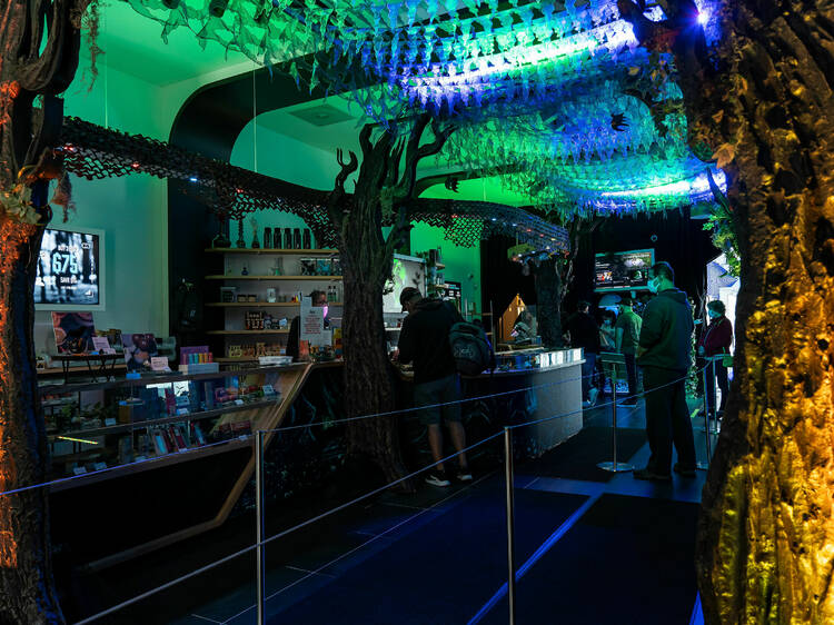 This Salem dispensary lets you buy weed in a haunted forest