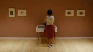 Exposição 'Desenhos de Mestres Europeus' no Museu Nacional Soares dos Reis