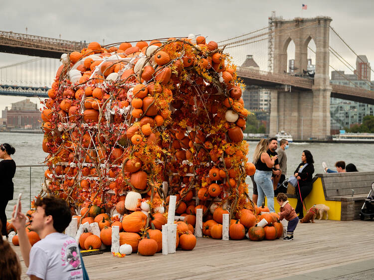 The most-Instagrammable Halloween spot in NYC is back
