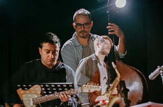Música, Jazz, Contrabaixista, André Carvalho