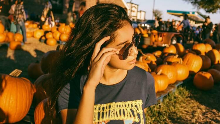 Cueillette de citrouilles / Pumpkin patch
