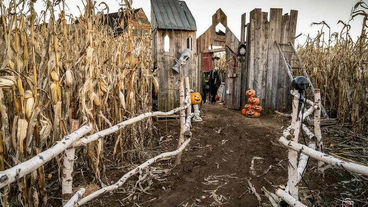 Quoi faire pour Halloween à Montréal en 2021