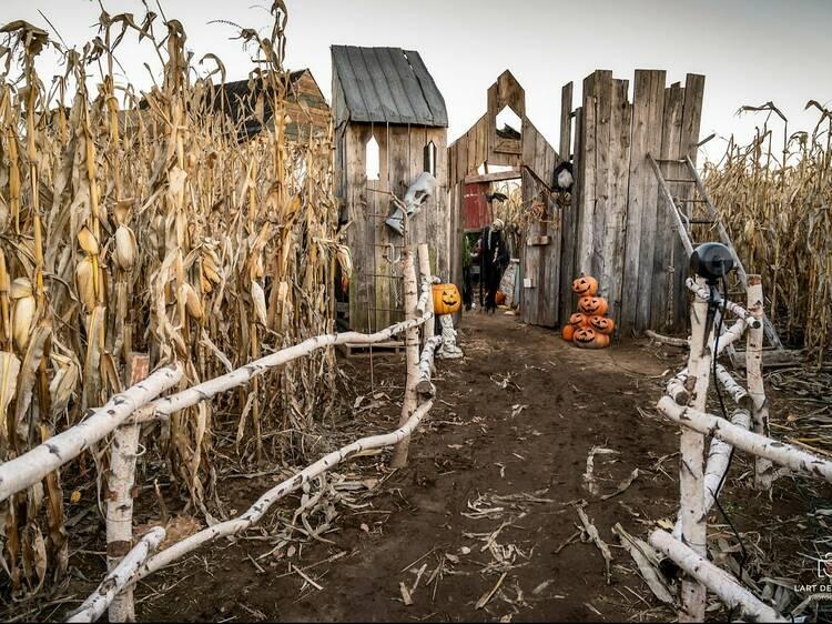 Festiv'Halloween at La Belle de Coteau-du-Lac