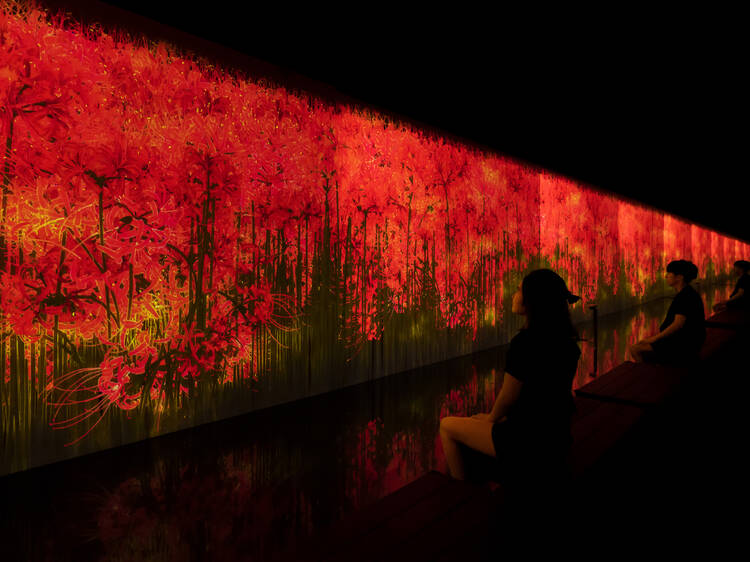 teamLab now has a bathhouse and sauna with digital art in Roppongi