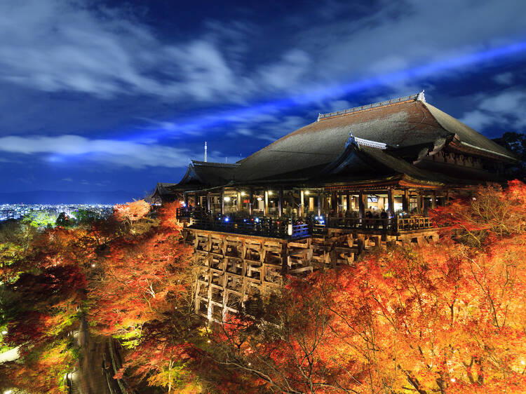 Kyoto's Kiyomizu-dera Temple is now open at night for a special autumn light-up