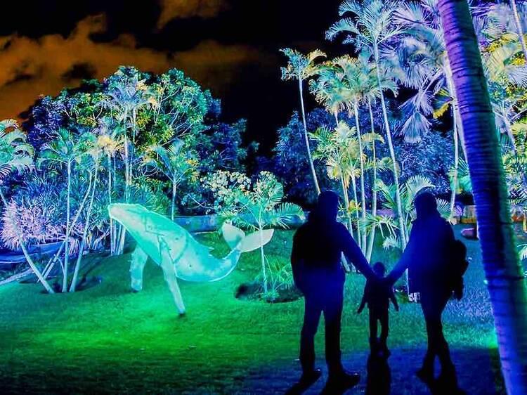 Vuelven las luces navideñas del Jardín Botánico y ya puedes comprar las entradas