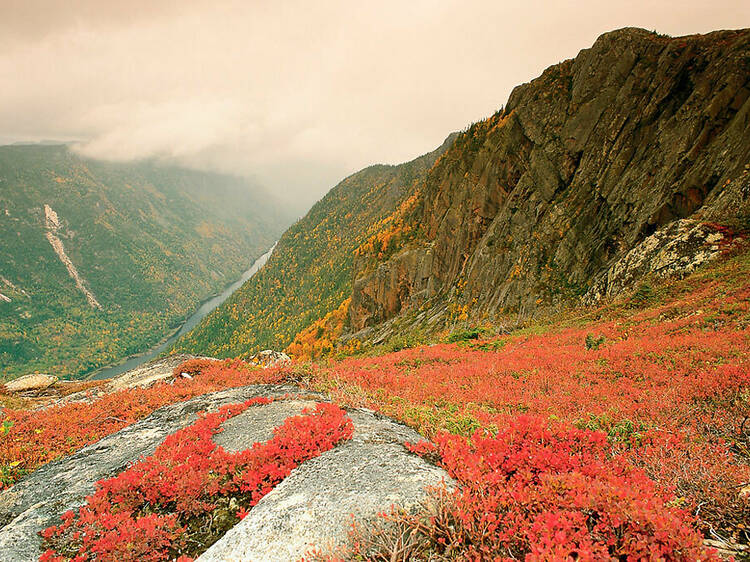 Get a beautiful fall hike in before the colours are gone
