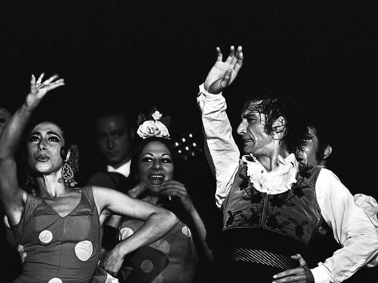 Colita flamenco