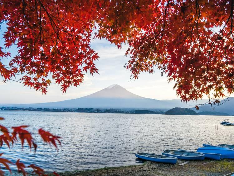 関東近郊、自治体の旅行割引クーポンまとめ